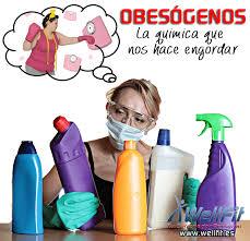 OBESOGENO