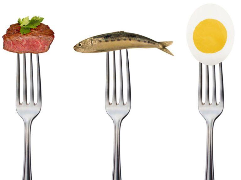 cenydiet alimentacion